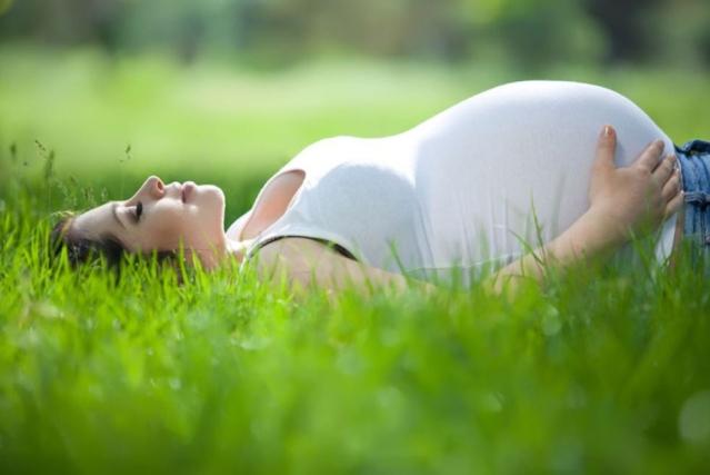 Une femme enceinte est allongée dans l'herbe